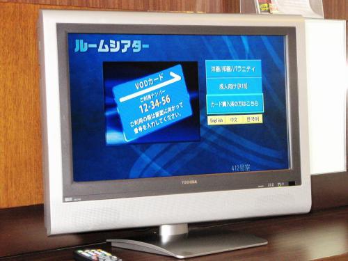 有料放送VOD(2019年12月中旬で終了)